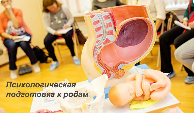 подготовка к родам на курсах